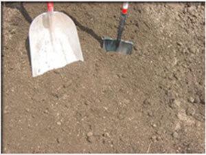 Compost Mix (No Soil)