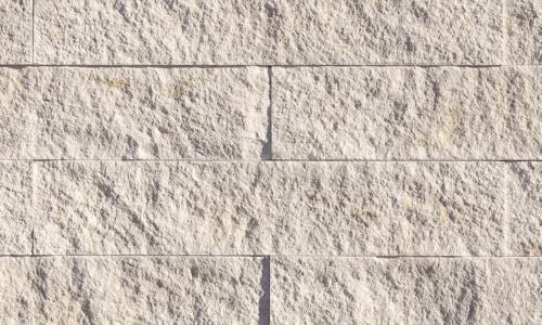 White Elm - Vantage30