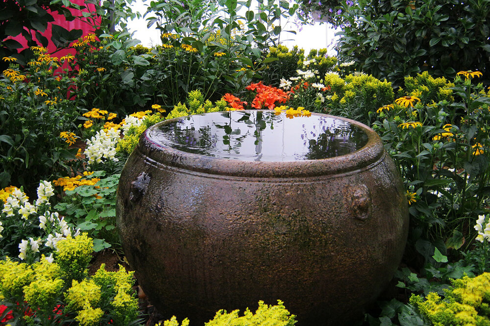 Create Your Garden Oasis Using Color