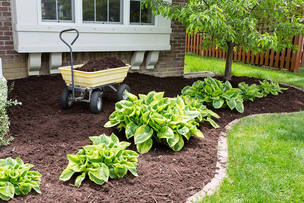 Pros and Cons of Landscape Fabric