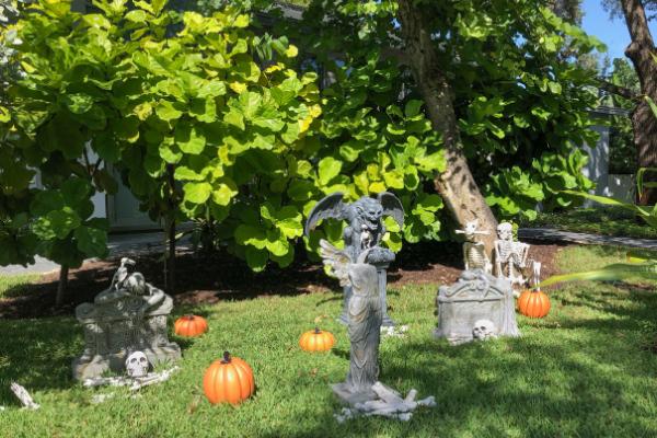 Turn Your Backyard Into a Spooky Halloween Haunt